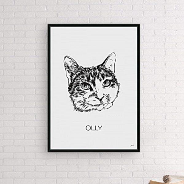 kat in sfeer